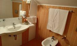 park-hotel-ivanjica-lux-apartman-2